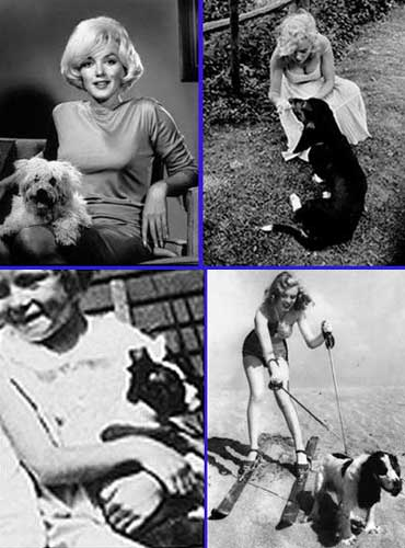 Marilyn and her dogs
