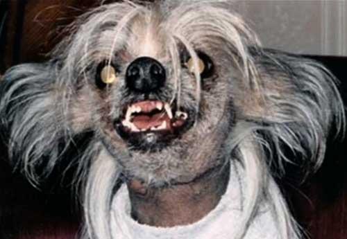uglydog-carolchanning.jpg