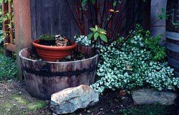 Prime Paghats Garden Fireplace Ashes Home Remodeling Inspirations Propsscottssportslandcom