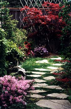Little Garden Path